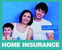 Rollins home insurance solutions-pic shows young couple with son and decorating paint rollers